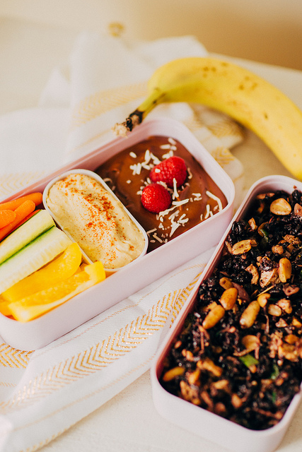 Airplane Friendly Vegan Bento Box - Airplane Snacks